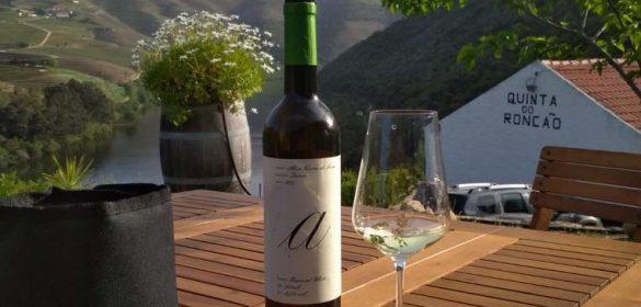 entrevue-vigneronne-la-table-de-frank-restaurant-luxembourg-steinfort-vins